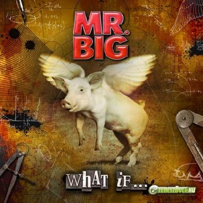 Mr. Big -  What If...