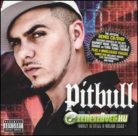 Pitbull -  Money Is Still a Major Issue