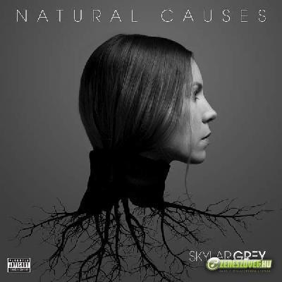 Skylar Grey -  Natural Causes
